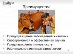 2014_10_30_006_shepherd_06.jpg