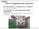 2014_10_30_006_shepherd_11.jpg