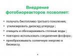 2014_10_30_010_photobio_purification_04.jpg