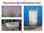 2014_10_30_010_photobio_purification_14.jpg