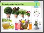 2015_06_30_001_CyberGrowSystems_14.jpg