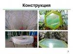 2015_06_30_007_microalgae_07.jpg